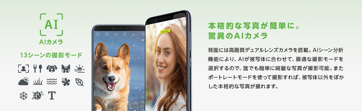 f:id:nishige0830:20190511181244j:plain