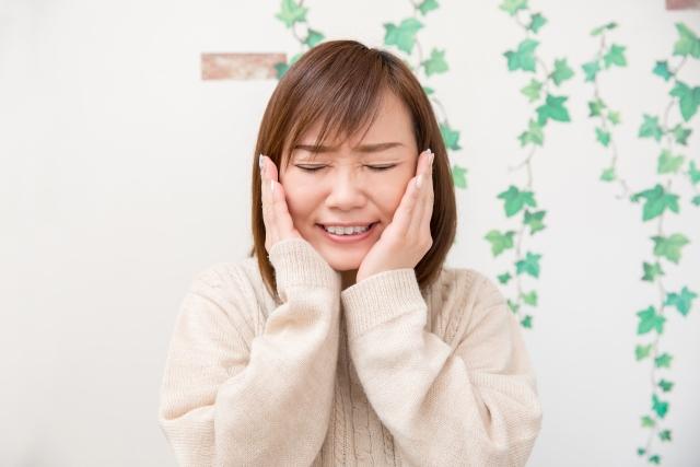 f:id:nishiishika:20200131190521j:plain