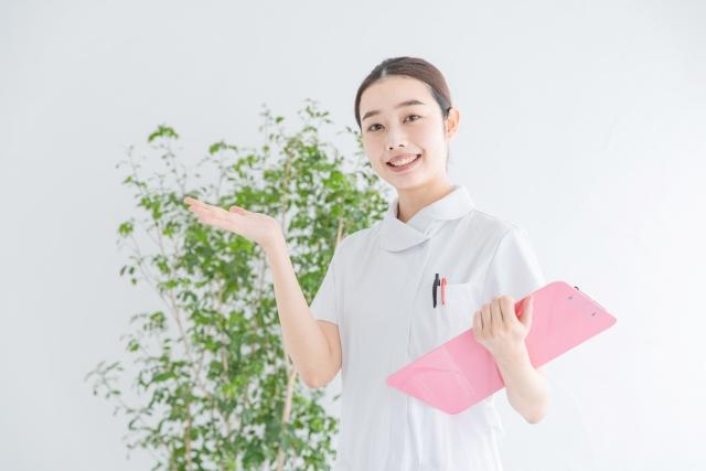 f:id:nishiishika:20200204112620j:plain