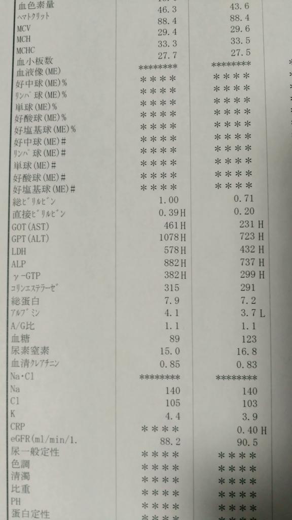 f:id:nishijima150907:20170506235825j:plain
