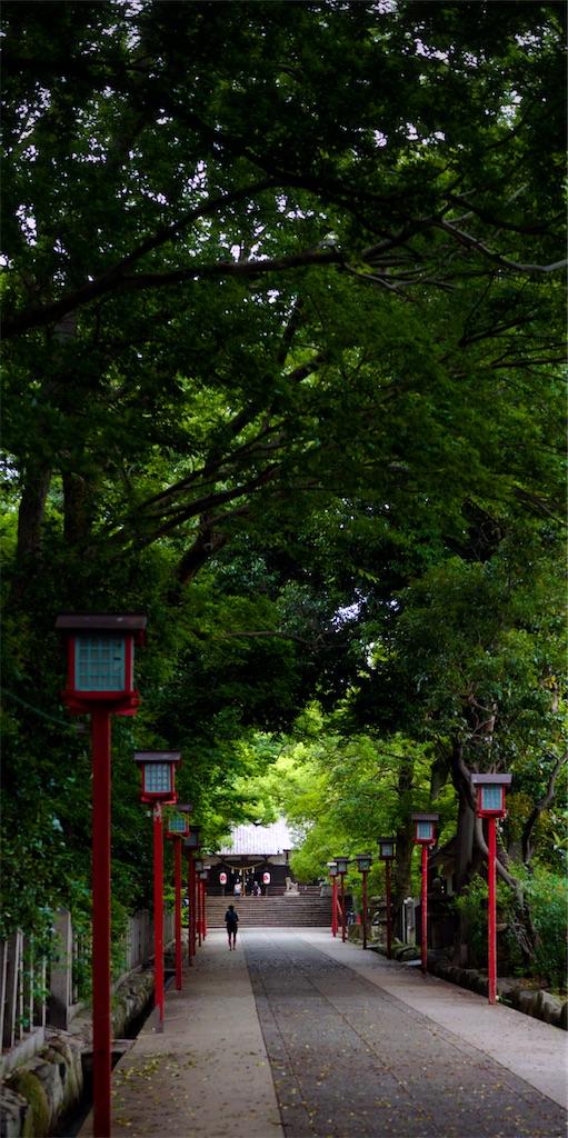 f:id:nishikawasasaki:20200615120203j:image