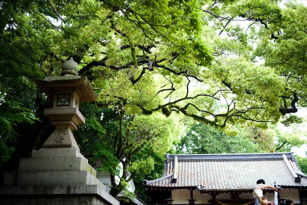 f:id:nishikawasasaki:20200615120402j:image
