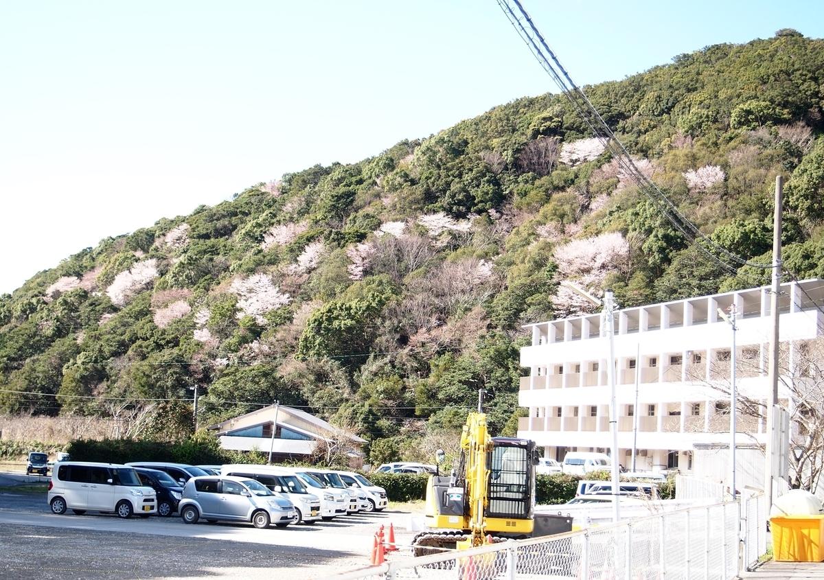 f:id:nishikien:20100101000001j:plain