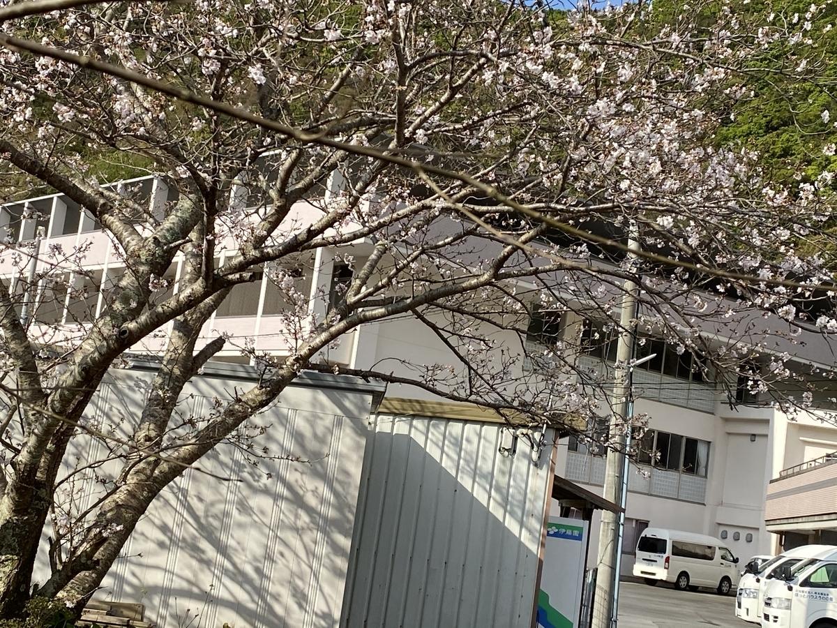 f:id:nishikien:20200402231754j:plain