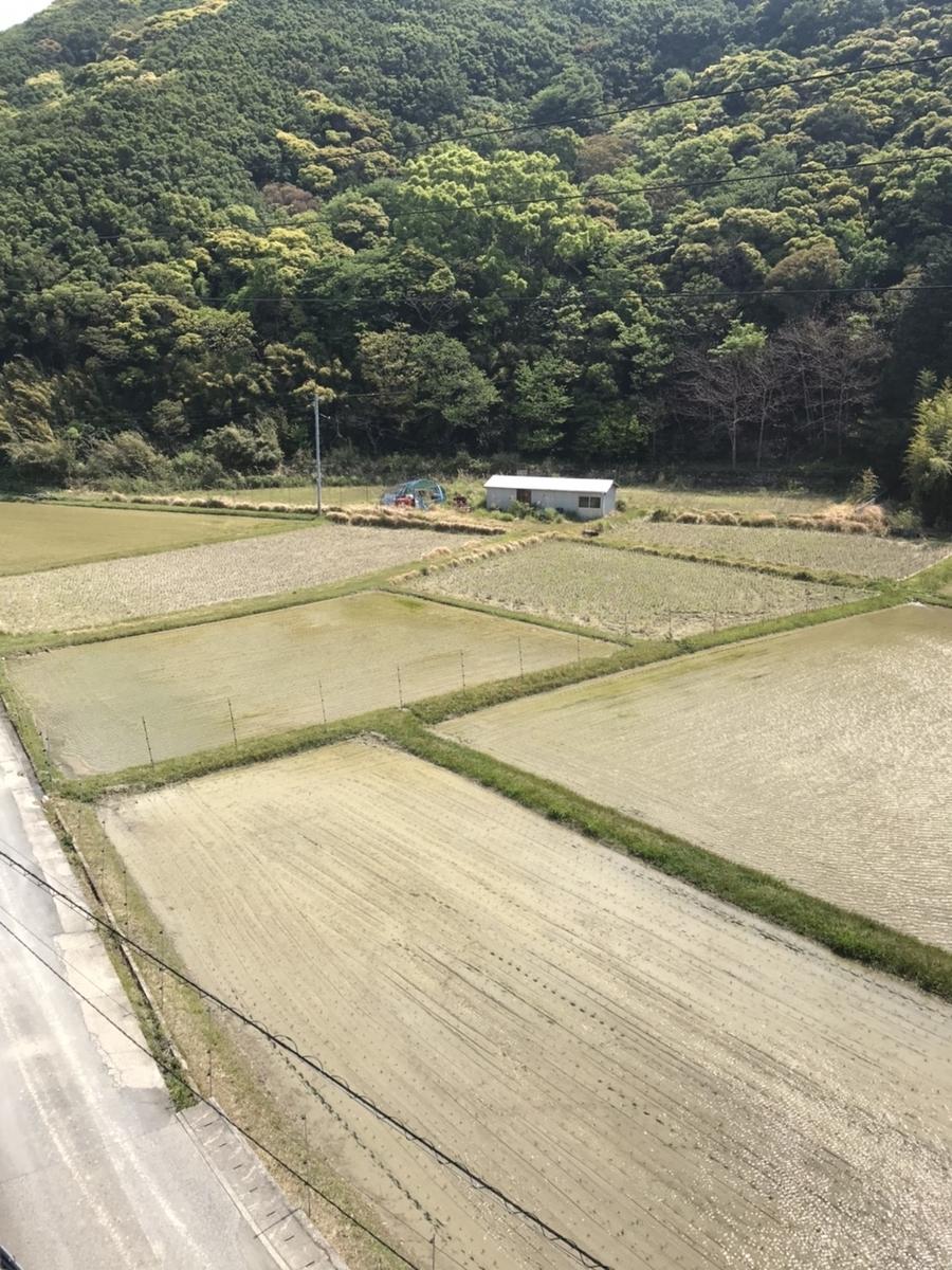 f:id:nishikien:20200501211102j:plain