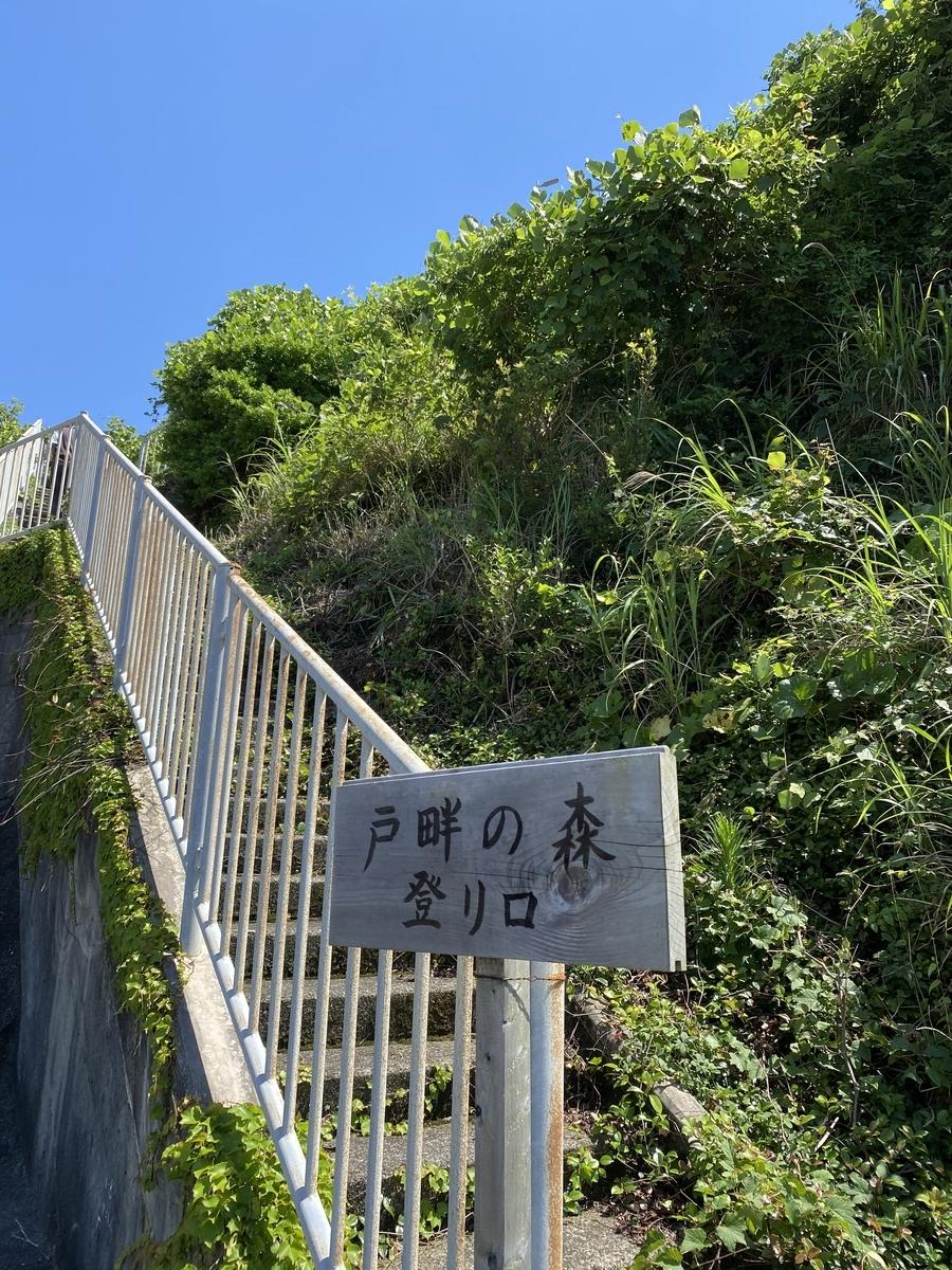 f:id:nishikien:20200616191507j:plain