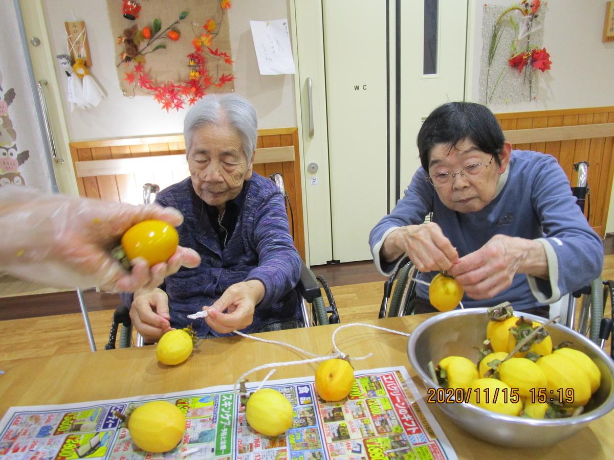 f:id:nishikien:20201119232359j:plain