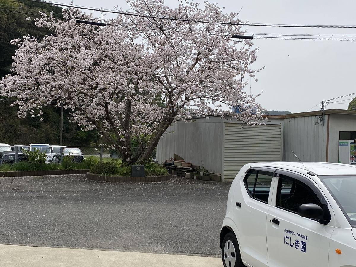 f:id:nishikien:20210404124545j:plain