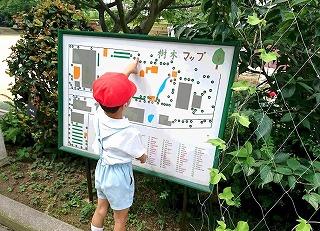 f:id:nishikikg:20170711195334j:plain
