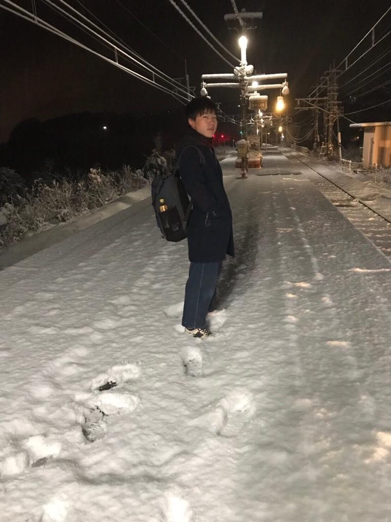 f:id:nishikikoi-sasayama:20190201142151j:plain