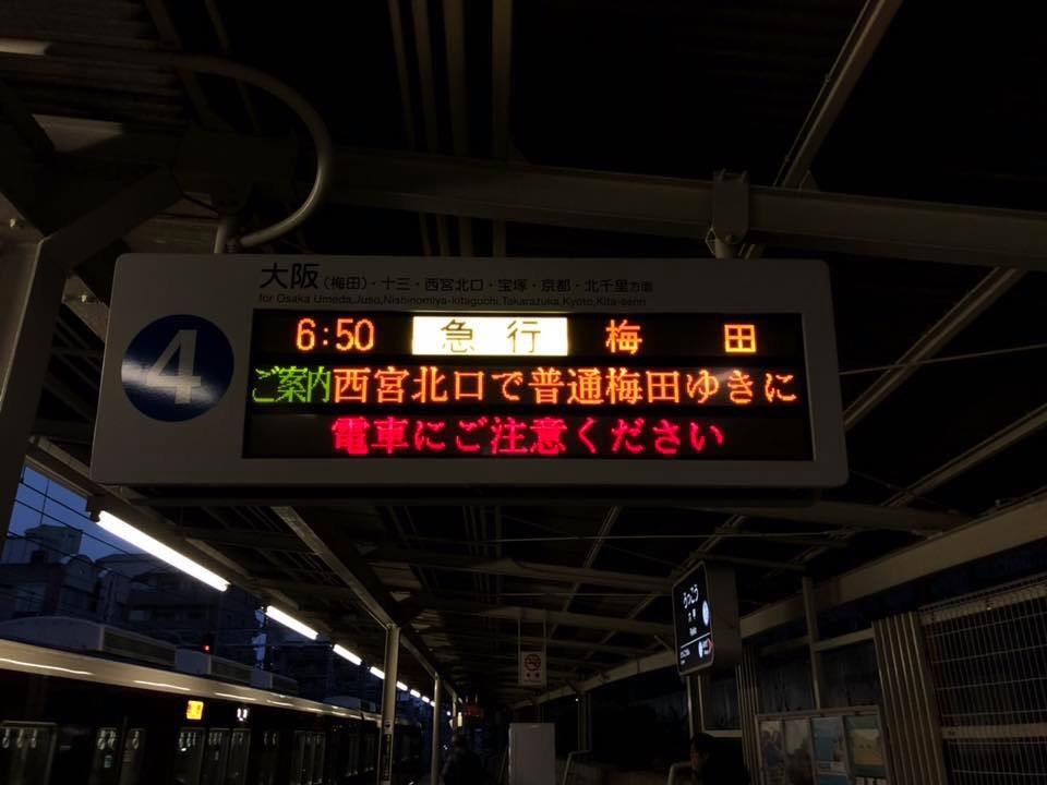 f:id:nishikikoi-sasayama:20190612195639j:plain