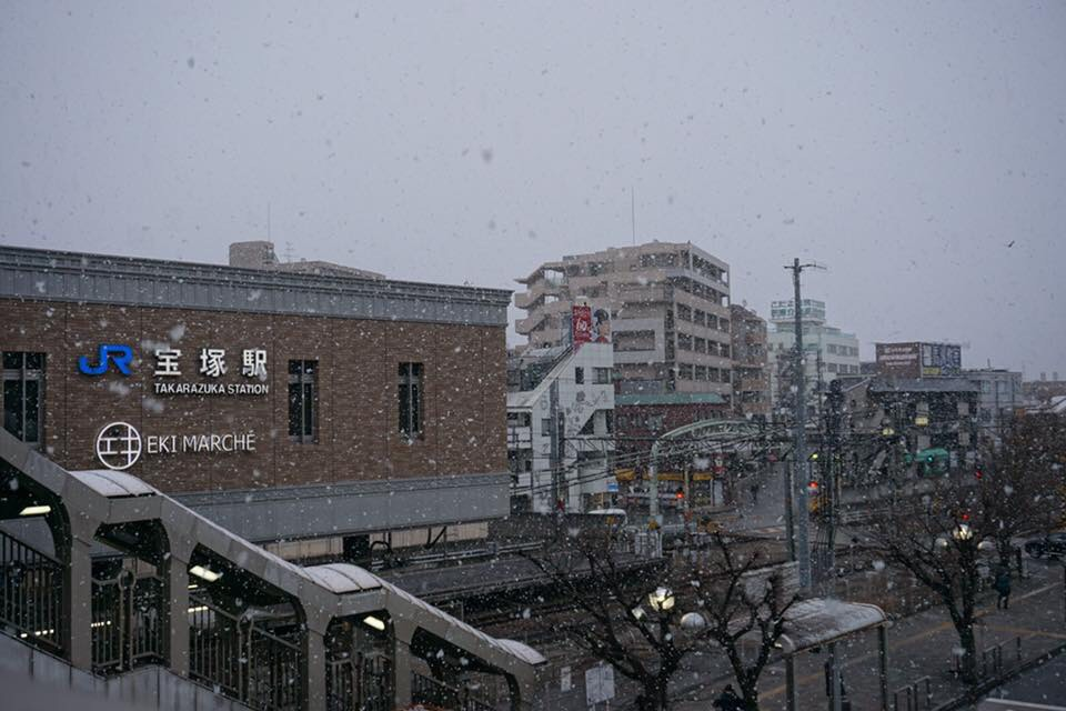 f:id:nishikikoi-sasayama:20190612195704j:plain
