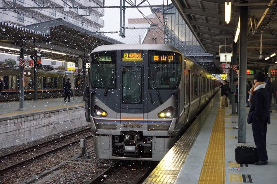 f:id:nishikikoi-sasayama:20190612195719j:plain