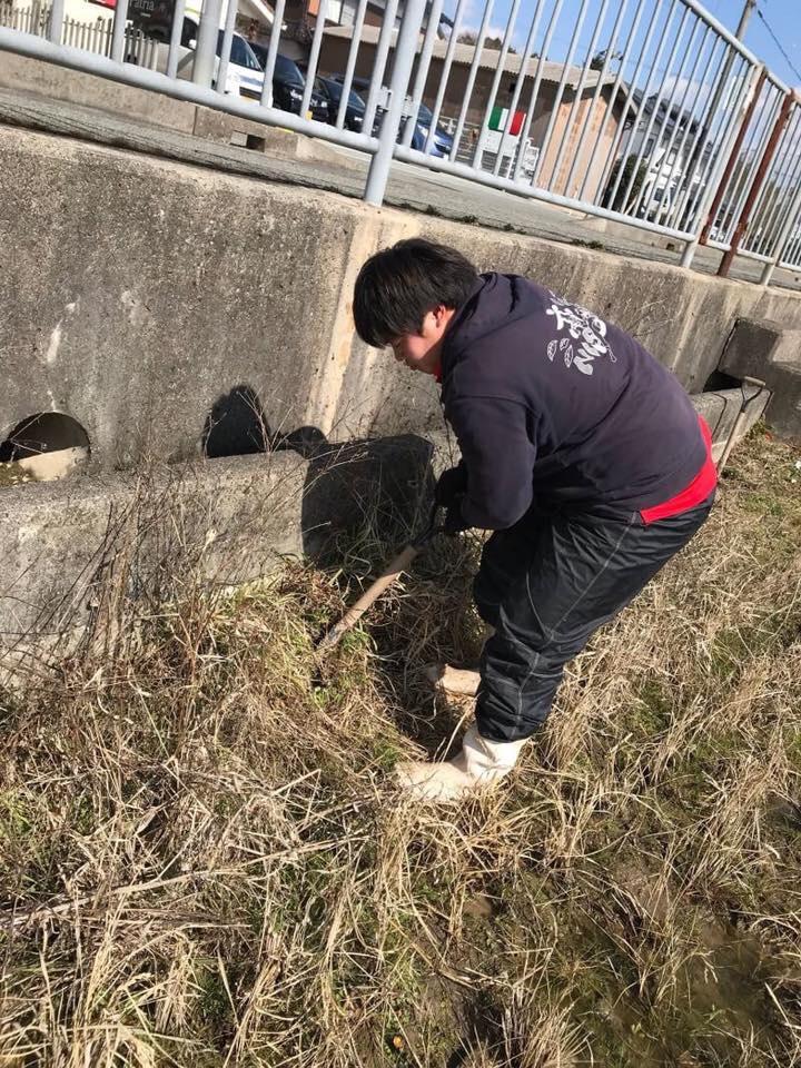f:id:nishikikoi-sasayama:20190614091850j:plain