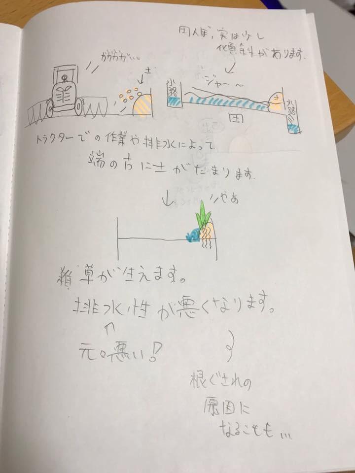 f:id:nishikikoi-sasayama:20190614091915j:plain