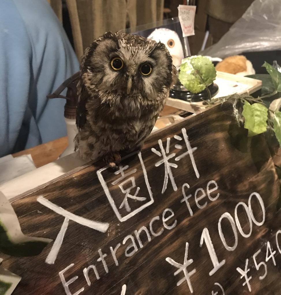 f:id:nishimarukanri:20180417152953j:plain