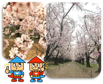f:id:nishimarukanri:20210321141142p:plain
