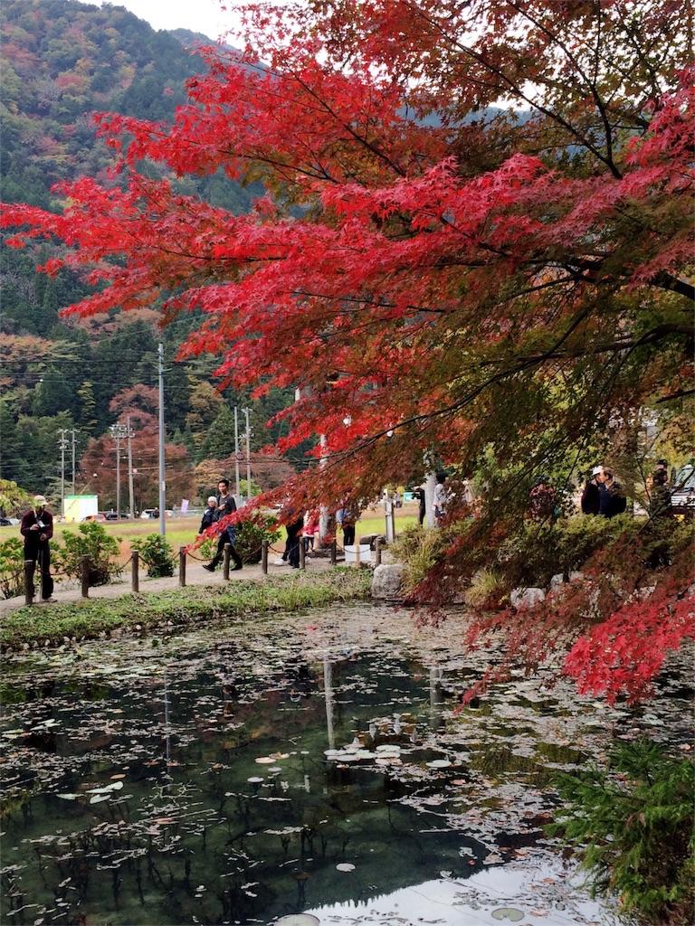 f:id:nishimikawa:20151108080628j:image