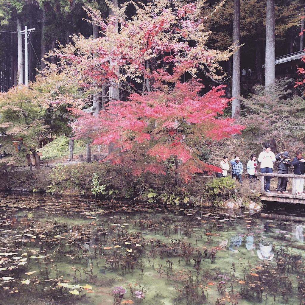 f:id:nishimikawa:20151110151230j:image