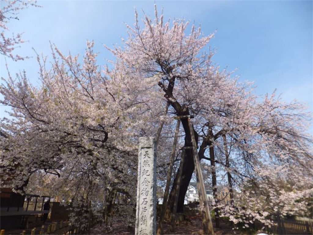 f:id:nishimikawa:20160120081451j:image