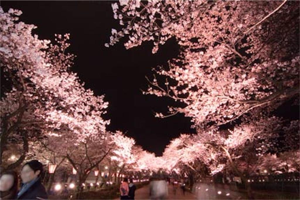 f:id:nishimikawa:20160120082956j:image