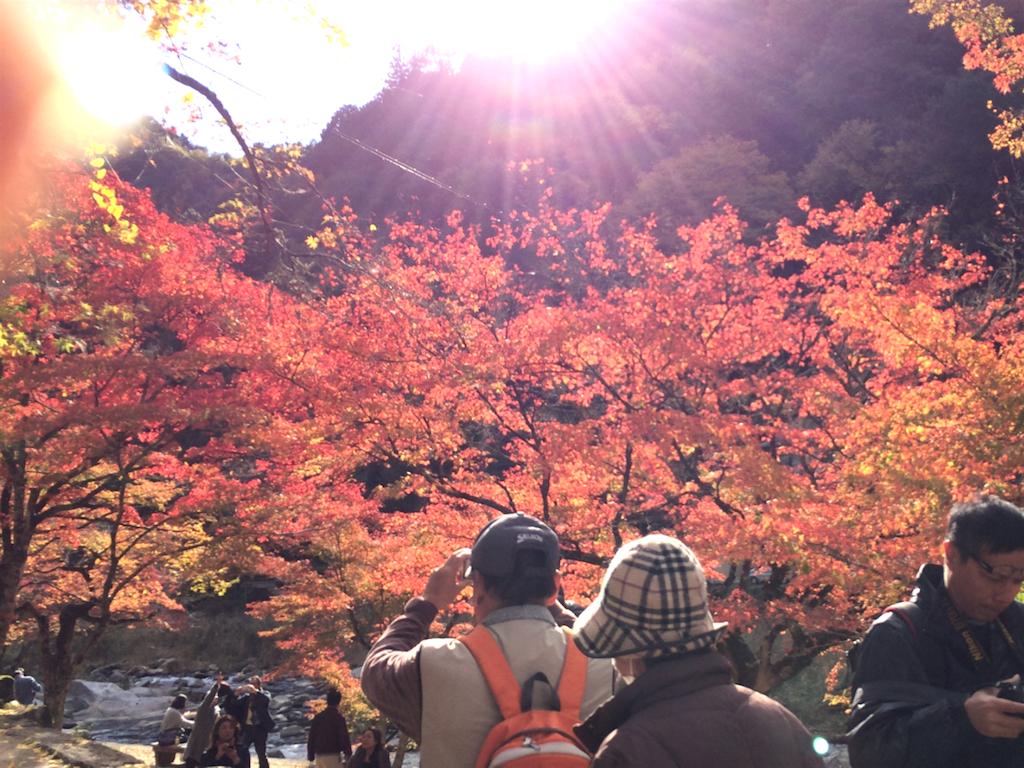 f:id:nishimikawa:20160912121115p:image