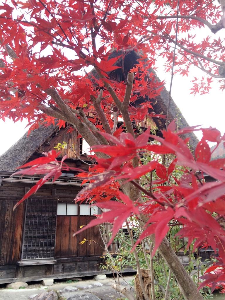f:id:nishimikawa:20160912131359j:image