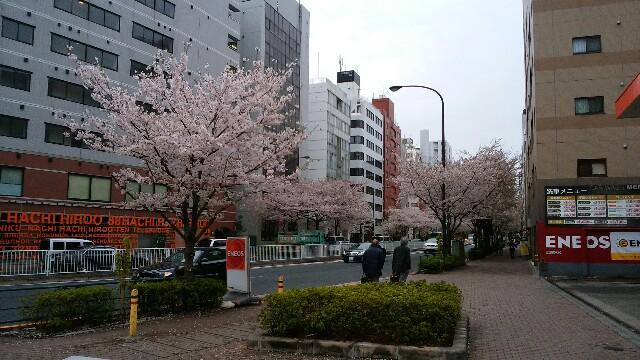 f:id:nishimori_yu:20160405143100j:image