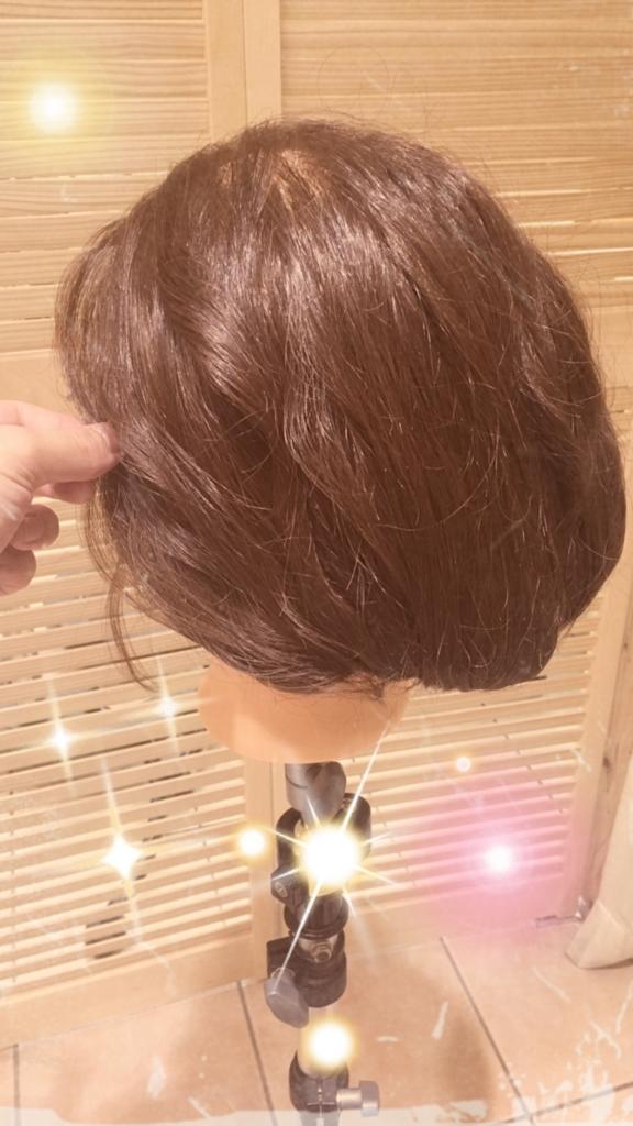 f:id:nishimura-takumi:20161027234703j:plain