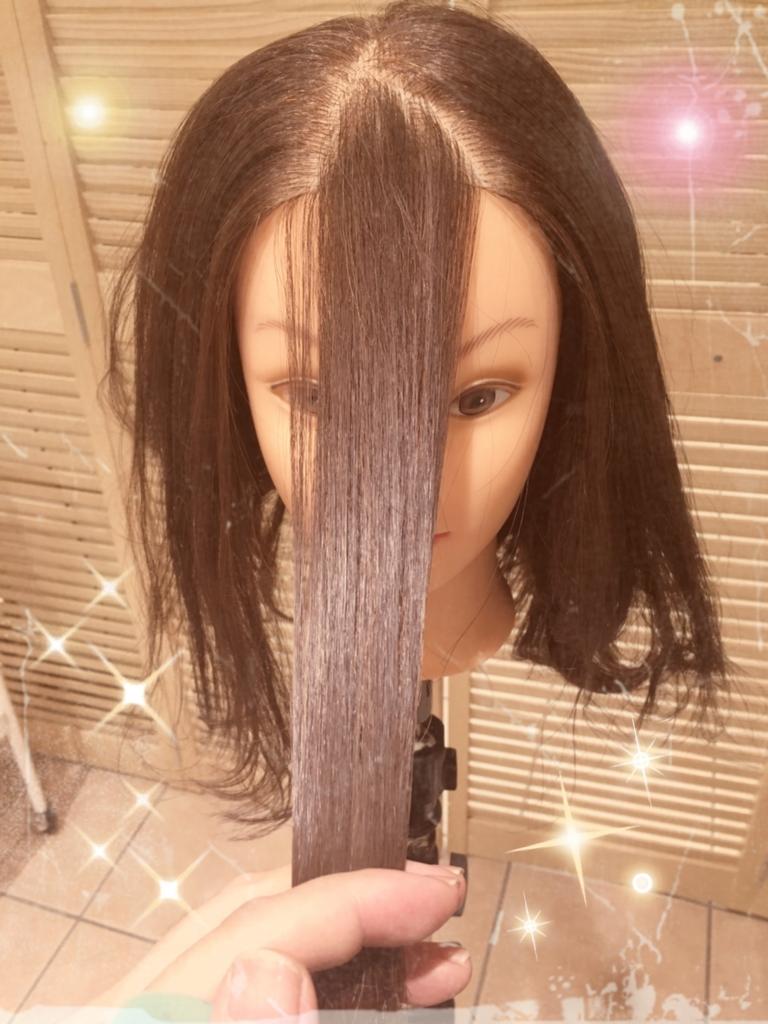 f:id:nishimura-takumi:20161101002846j:plain