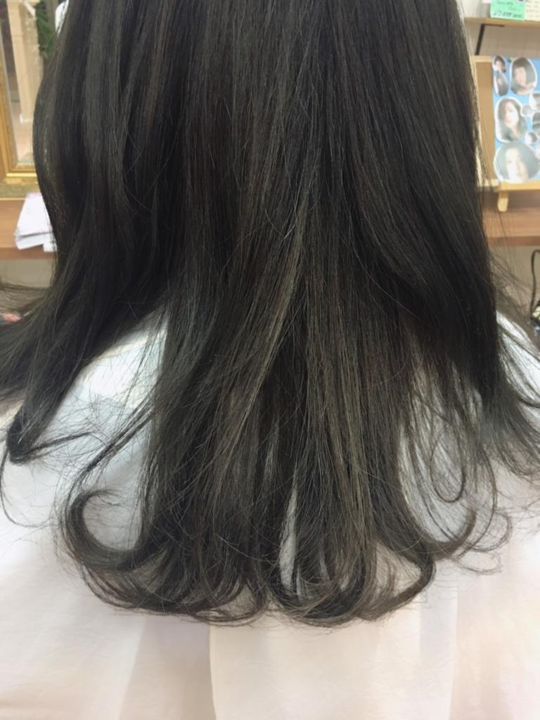 f:id:nishimura-takumi:20161214180357j:plain