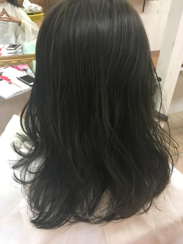 f:id:nishimura-takumi:20170115233406j:plain