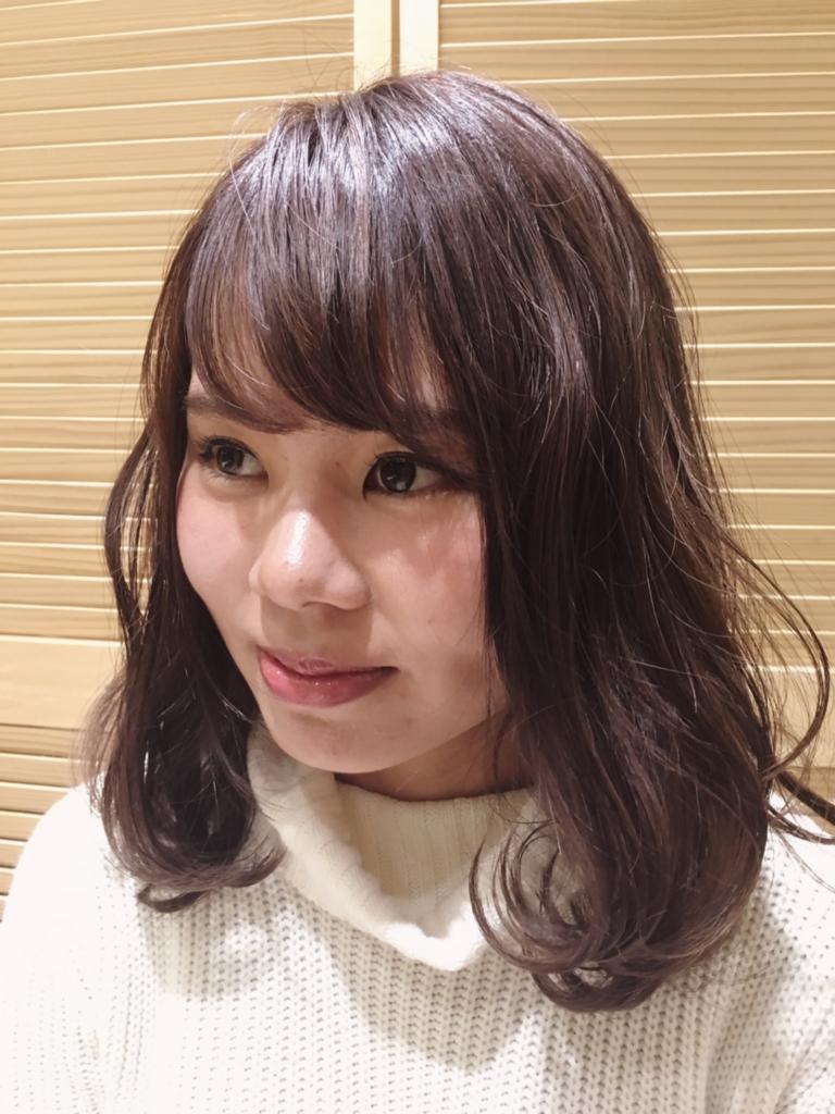 f:id:nishimura-takumi:20170203000700j:plain