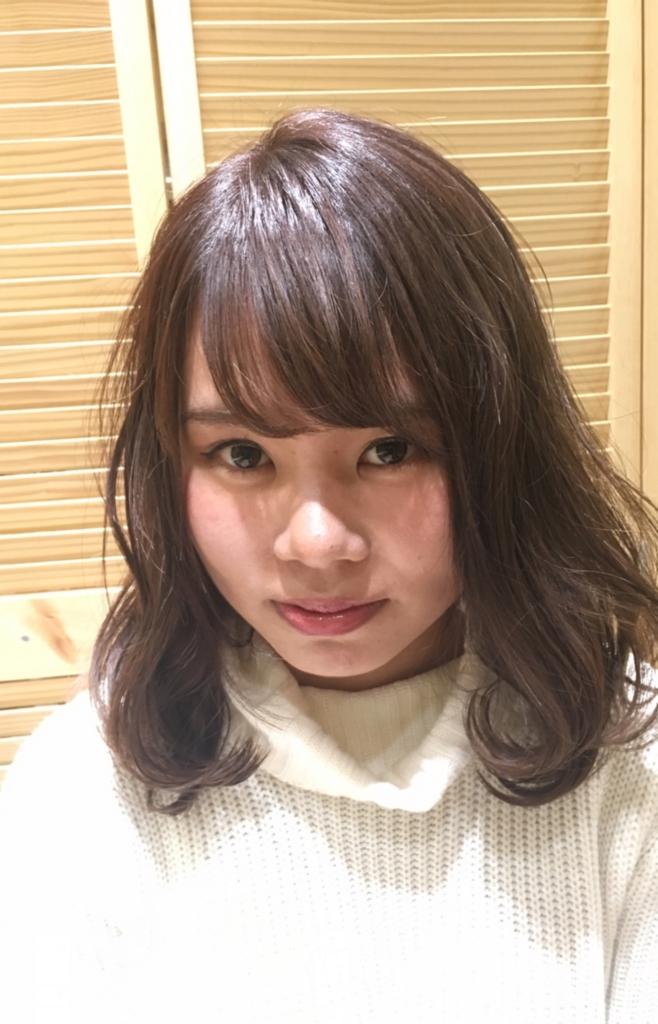 f:id:nishimura-takumi:20170203000722j:plain