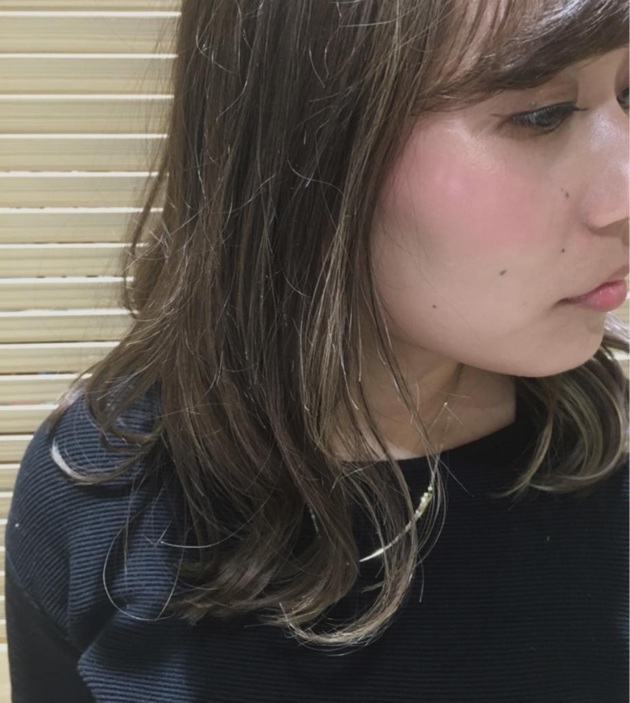 f:id:nishimura-takumi:20170203220132j:plain