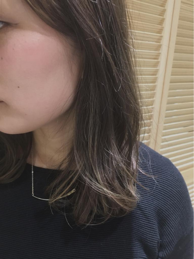 f:id:nishimura-takumi:20170203220152j:plain