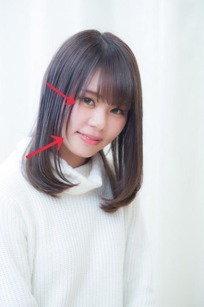 f:id:nishimura-takumi:20170209123435j:plain