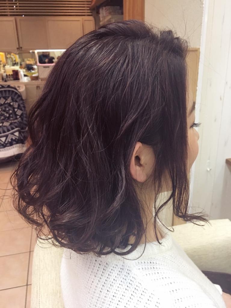 f:id:nishimura-takumi:20170302124643j:plain