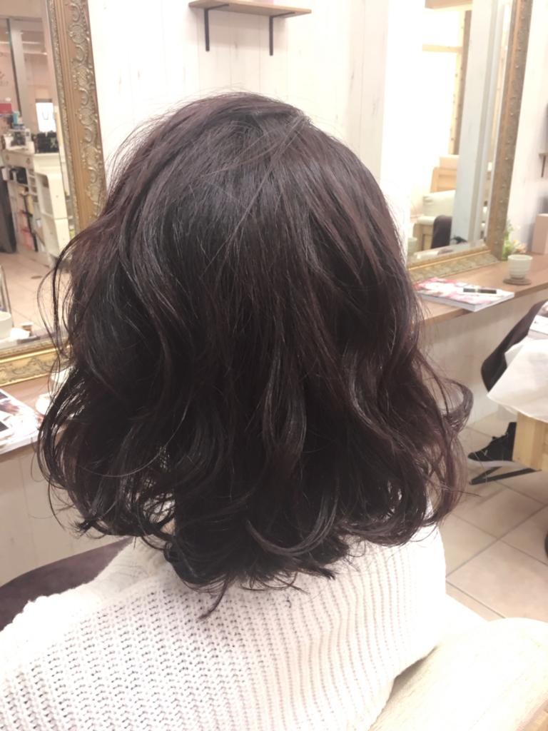 f:id:nishimura-takumi:20170302124703j:plain