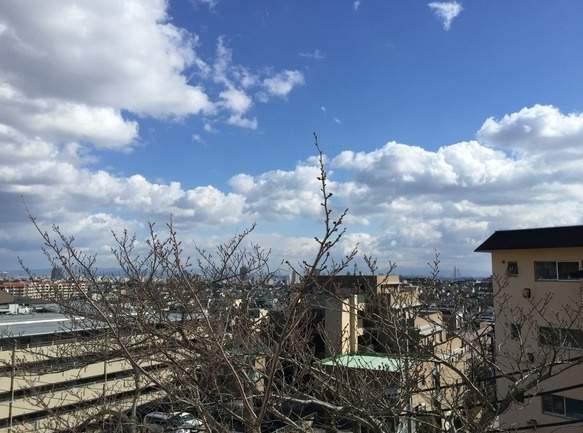 コボリマンション夙川老松台A棟(3階部分・75.60㎡) 眺望