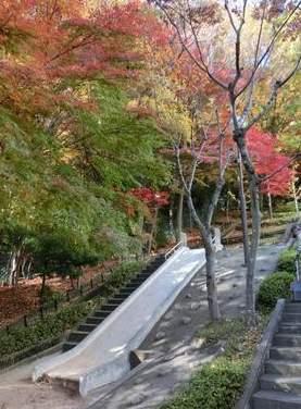 藤和ライブタウン甲陽園山王町B号棟(4階部分・105.76㎡) 公園
