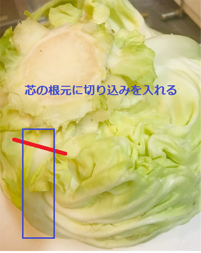 f:id:nishino-kiiro:20181128095715p:plain