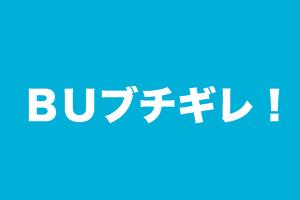 f:id:nishinokazu:20170319081940p:plain