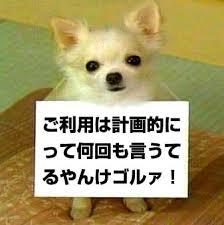 f:id:nishinokazu:20170502183039j:plain