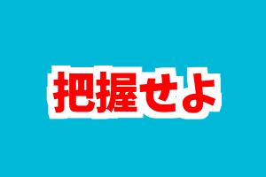 f:id:nishinokazu:20170528062223p:plain