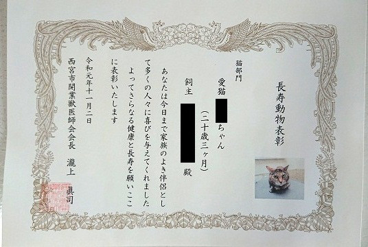 f:id:nishinomiya-minami:20210907132350j:plain