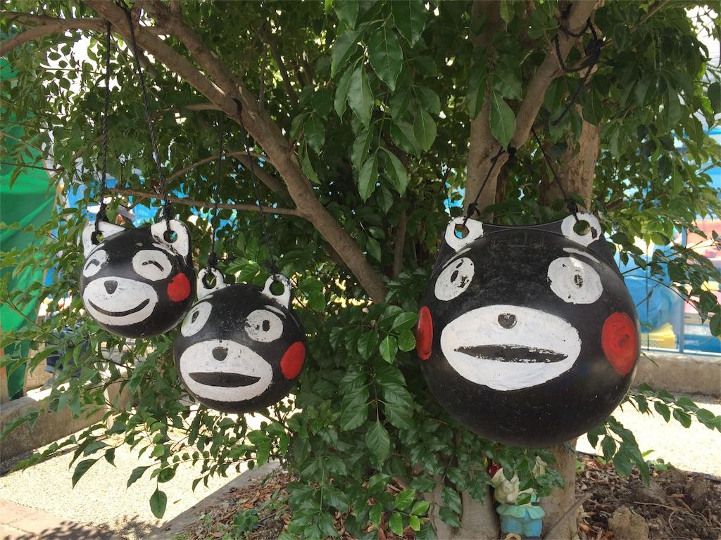 f:id:nishinoneko:20170526033201j:image