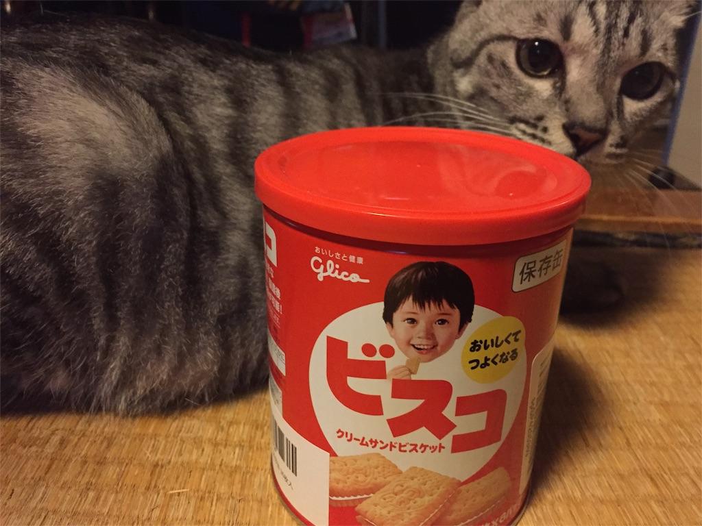f:id:nishinoneko:20170706121638j:image