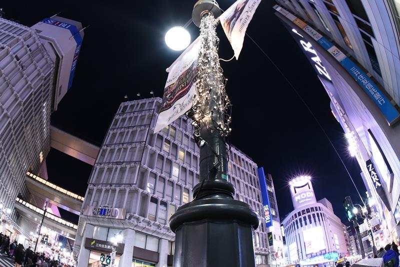 f:id:nishio2409:20161214105640j:plain