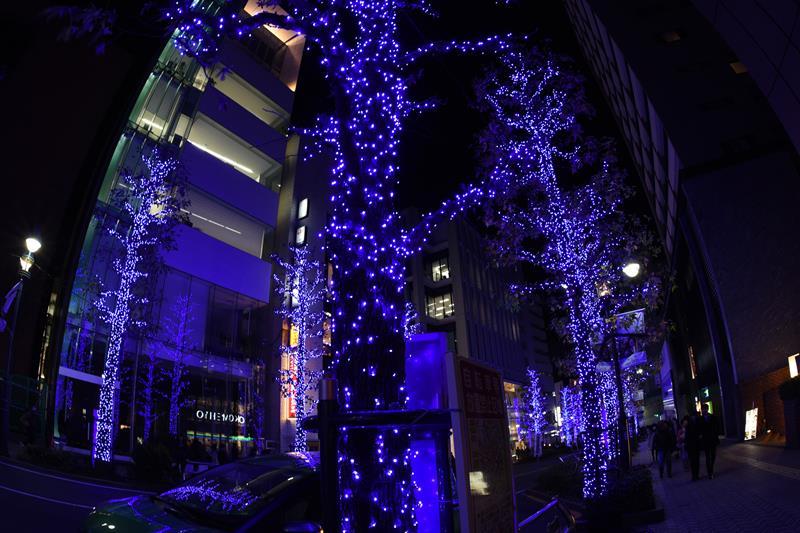 f:id:nishio2409:20161214105656j:plain